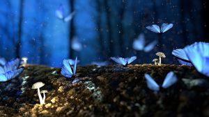 Fairytale scene - butterflies